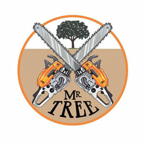 Mr. Tree Logo